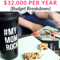 Single Mom Budget my debt epiphany