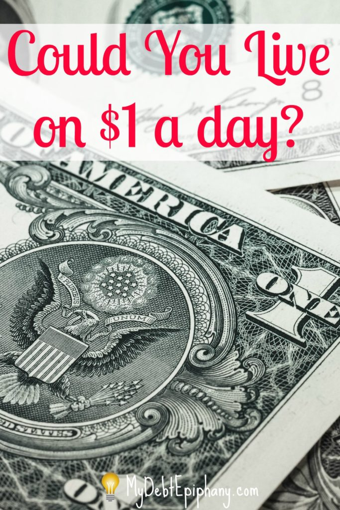 Could You Live on a Dollar a Day