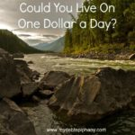 Could You Live On One Dollar a Day?